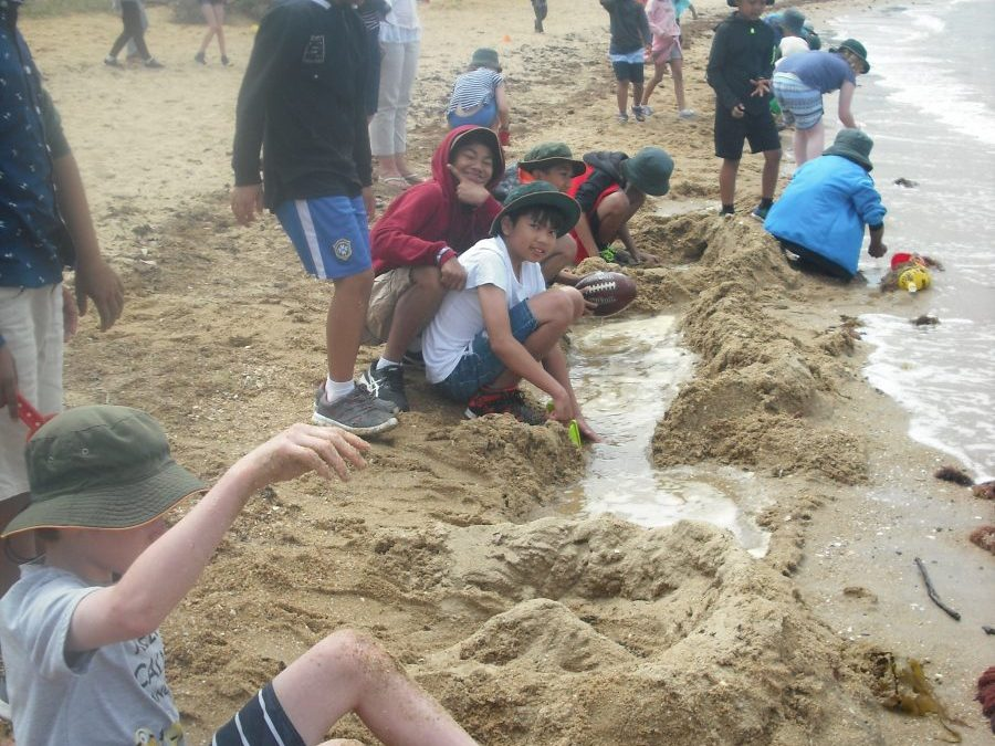 Whole school beach day